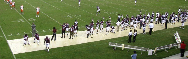 Texas Southern Tigers