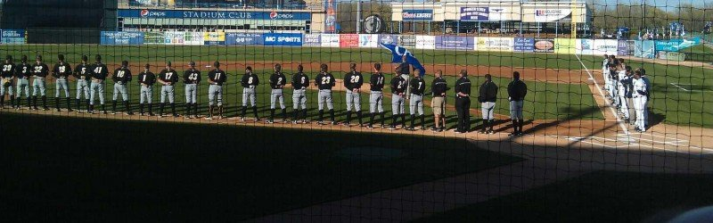 West Michigan Whitecaps