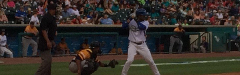 Sugar Land Skeeters