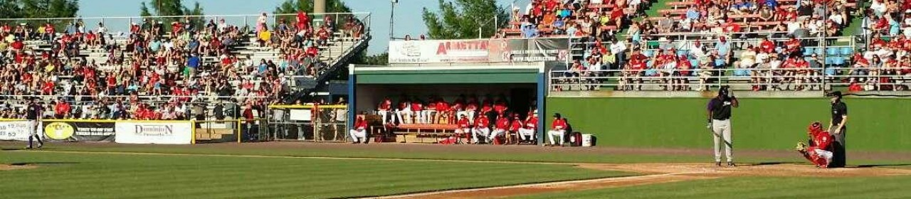 Photos Of The Potomac Nationals At G Richard Pfitzner Stadium