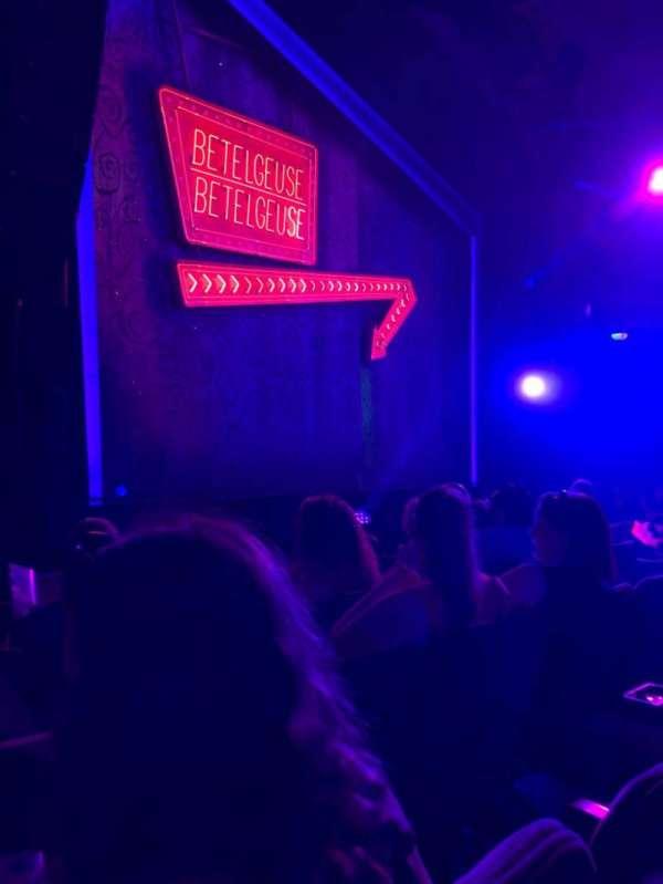 Winter Garden Theatre, section: Orch, row: E, seat: 19