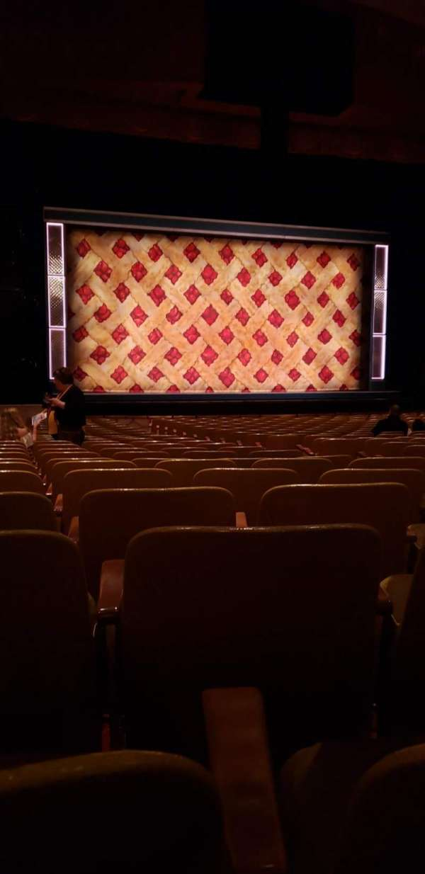 Fisher Theatre, section: Mnlt, row: V, seat: 9