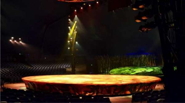 Cirque Du Soleil - Totem, section: 102, row: D, seat: 9