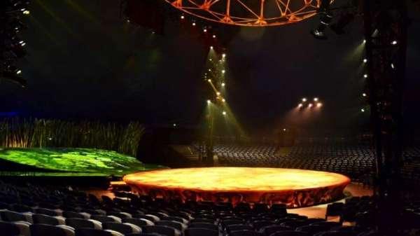 Cirque Du Soleil - Totem, section: 203, row: J, seat: 6