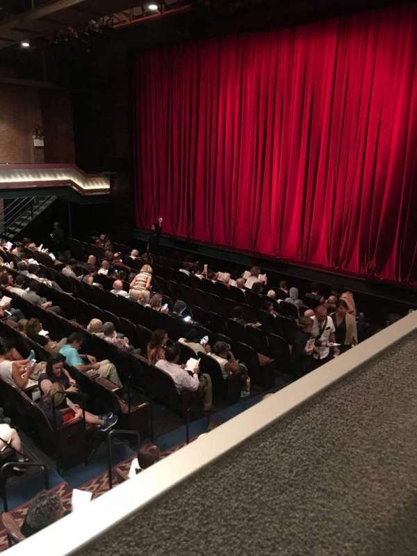 The Joyce Theater, section: loge (lg), row: a, seat: 224