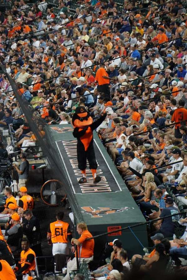 Oriole Park at Camden Yards, section: 39, row: 6, seat: 11