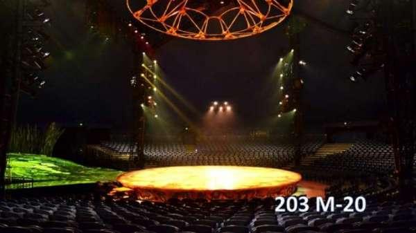 Cirque Du Soleil - Totem, section: 203, row: M, seat: 20