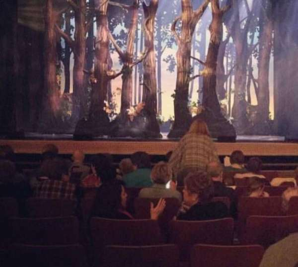 Morris Performing Arts Center, section: ORCH, row: CT-E, seat: 10