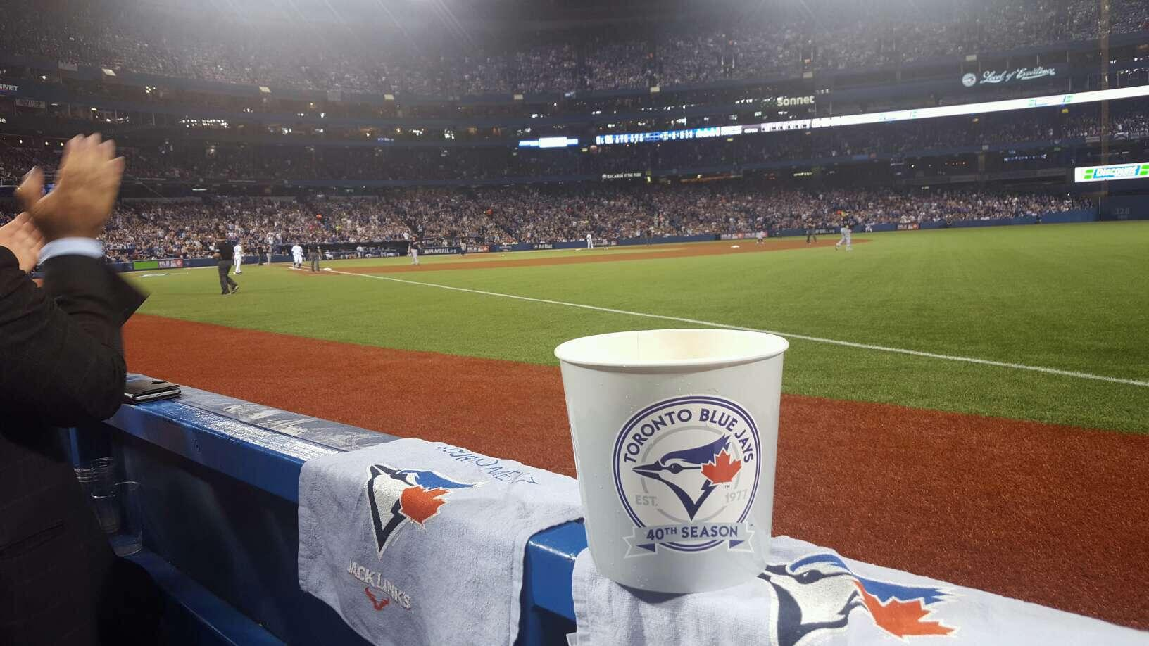 Rogers Centre Section 113c Row 1