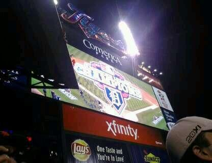 Comerica Park Section 221