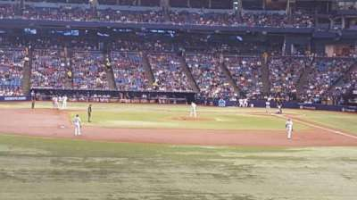 Tropicana Field, section: 143, row: JJ, seat: 5