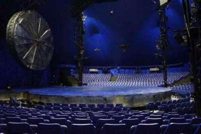 Cirque Du Soleil - Luzia, section: 203, row: H, seat: 8