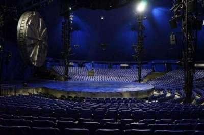 Cirque Du Soleil - Luzia, section: 203, row: M, seat: 20