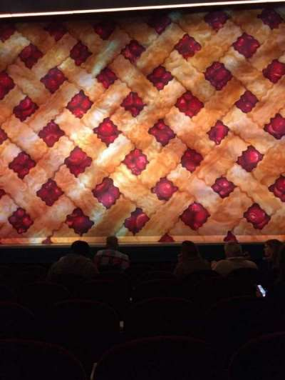 Brooks Atkinson Theatre, section: ORCH, row: E, seat: 110