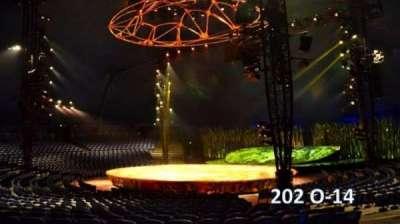 Cirque Du Soleil -Totem, section: 202, row: O, seat: 14