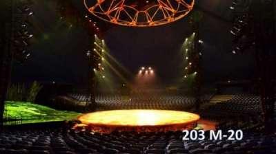 Cirque Du Soleil -Totem, section: 203, row: M, seat: 20