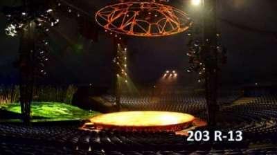 Cirque Du Soleil -Totem, section: 203, row: R, seat: 13