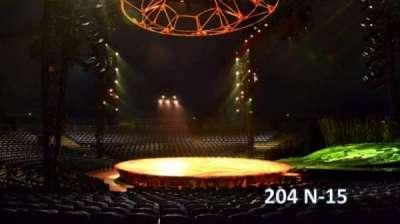 Cirque Du Soleil -Totem, section: 204, row: N, seat: 15