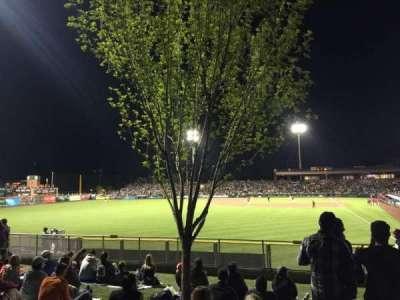 Scottsdale Stadium, section: Lawn