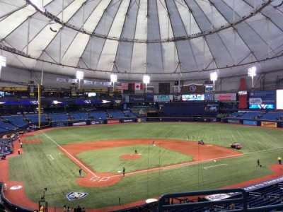 Tropicana Field, section: 204, row: D, seat: 7