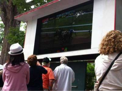 Saratoga Race Course, section: The Back Yard