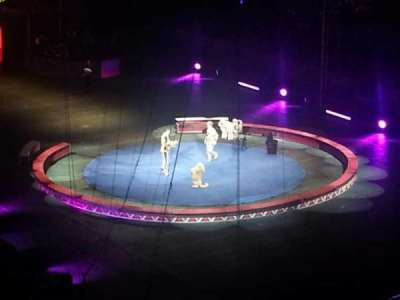 Infinite Energy Arena, section: 222, row: D, seat: 7