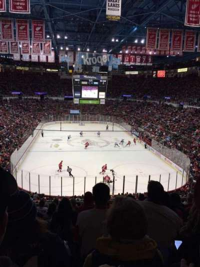 Joe Louis Arena, section: 201, row: 10