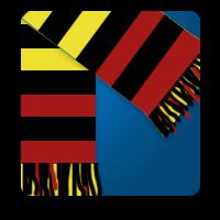 Watford FC Game