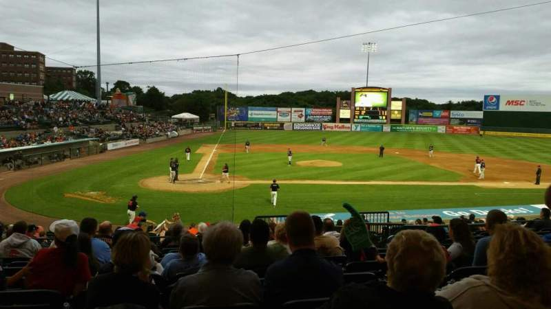 Photos Of The Long Island Ducks At Bethpage Ballpark