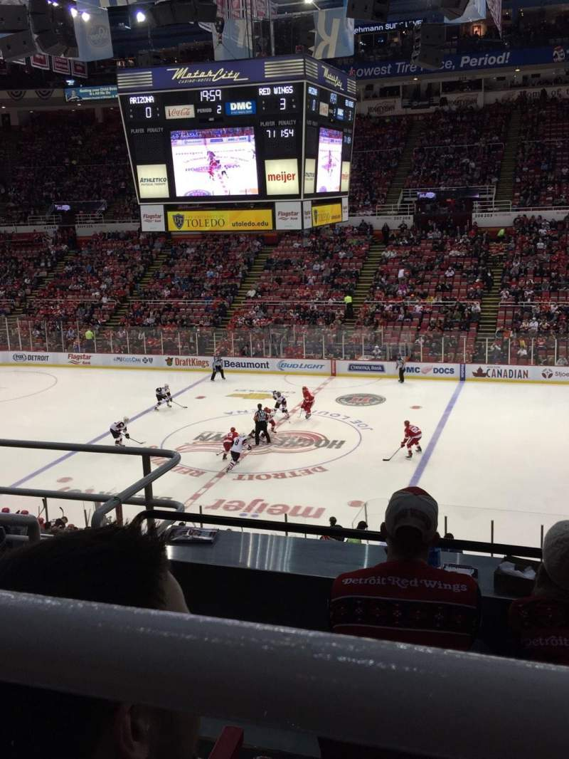 Seating view for Joe Louis Arena Section 220 Row 5 Seat 10